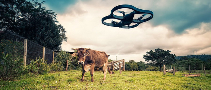 The Rise of the Drones – and they need Insurance too!